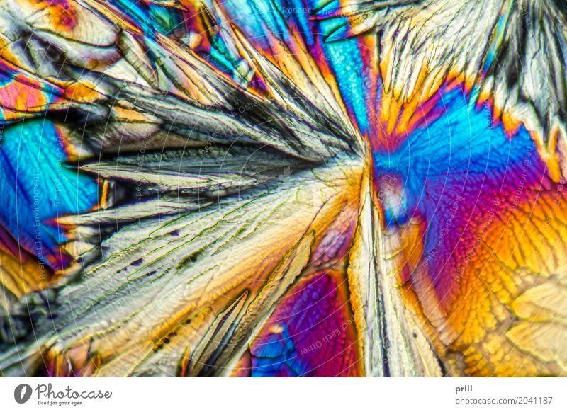 microscopic Galactose crystals Natur Beleuchtung außergewöhnlich Wissenschaften leicht Zucker Kristallstrukturen Mineralien künstlich Lichtbrechung vergrößert