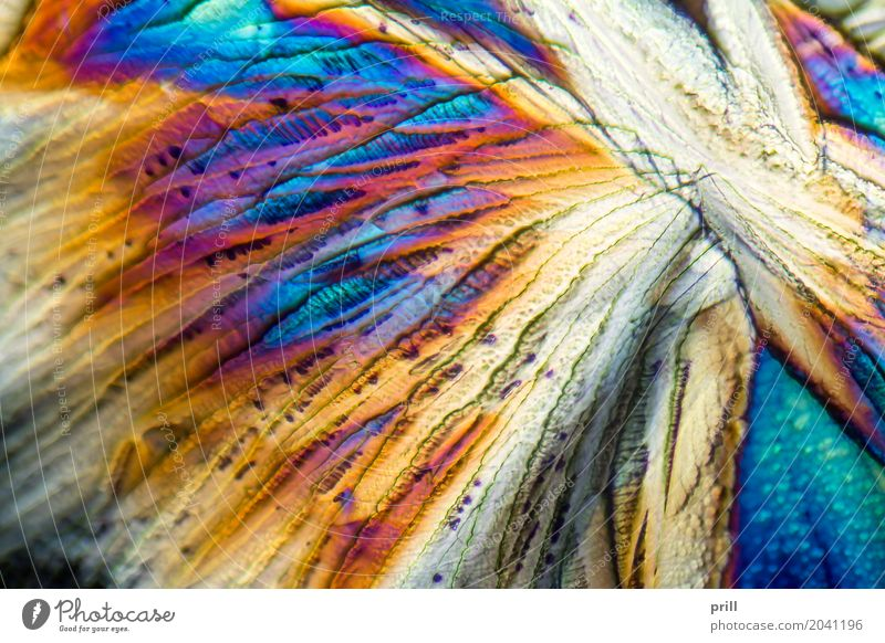 microscopic Galactose crystals Natur Beleuchtung außergewöhnlich Wissenschaften leicht Zucker Kristallstrukturen künstlich Mineralien Lichtbrechung vergrößert