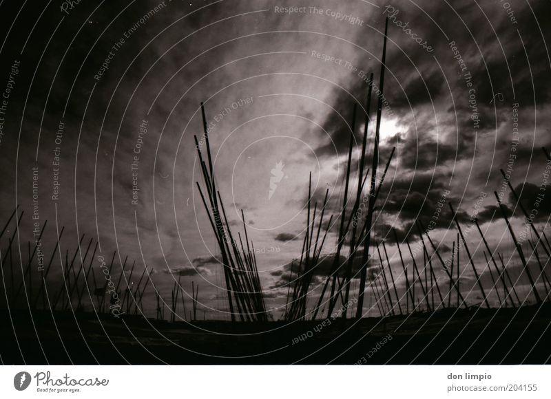 Finster wird es Ferne Sonne Hafen Umwelt Himmel Wolken Wetter schlechtes Wetter Unwetter Wind Segelschiff Wasserfahrzeug Jachthafen kalt schwarz weiß Horizont