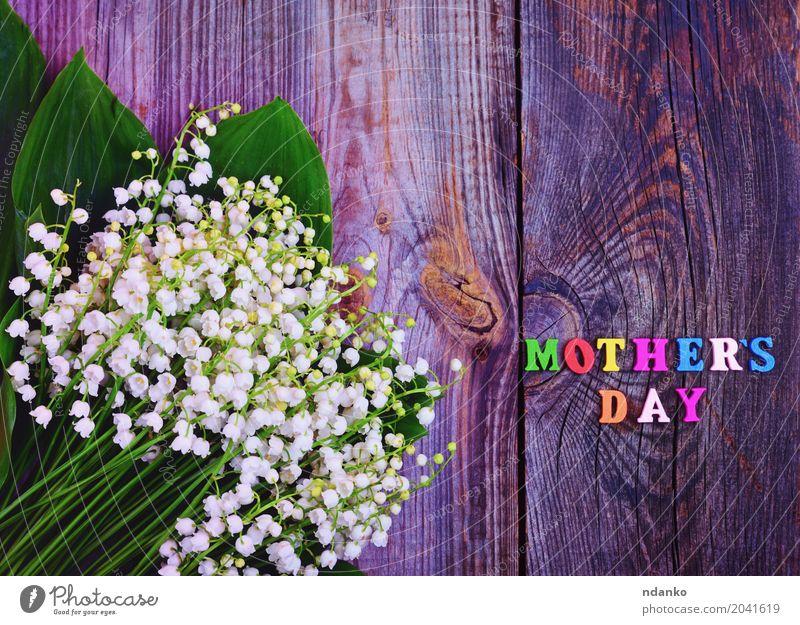 Festlicher grauer hölzerner Hintergrund mit dem Tag der Aufschrift Mutter Natur alt Pflanze grün weiß Blume Blüte natürlich Holz hell Blühend Geschenk