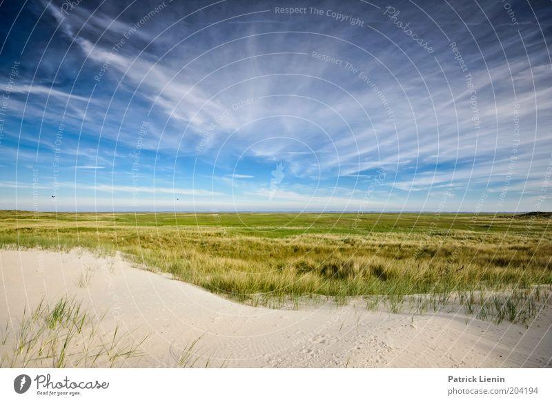 Welcome to sky valley Umwelt Natur Landschaft Pflanze Urelemente Erde Luft Himmel Wolken Sommer Klima Schönes Wetter Wind Küste Strand Nordsee Meer Insel