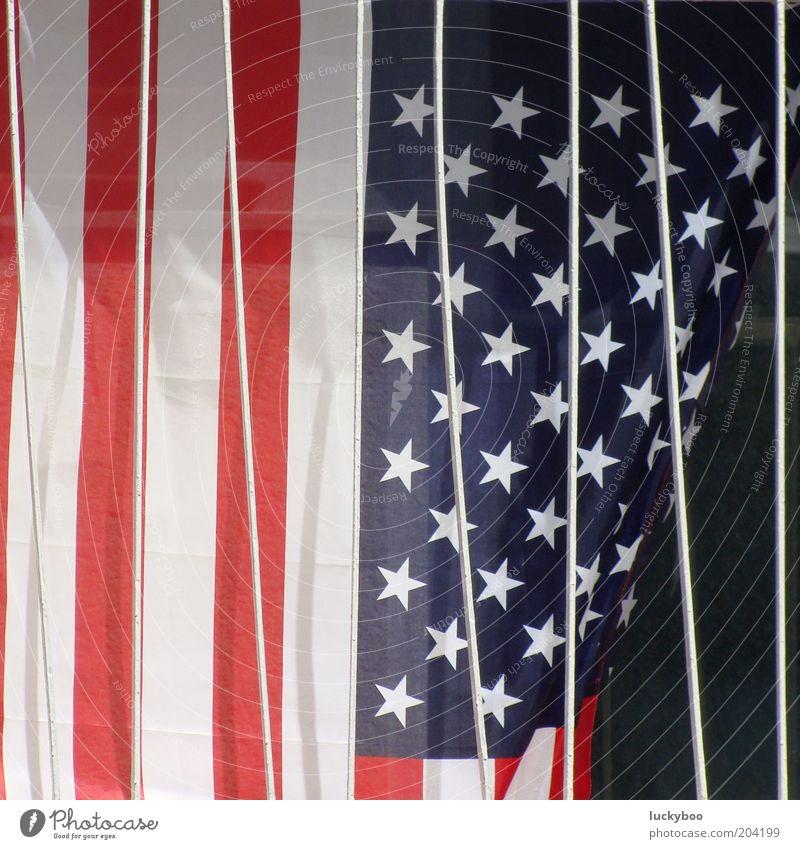 American Stars'n Bars blau weiß rot Farbe Stern (Symbol) Streifen Macht USA Dekoration & Verzierung Vergänglichkeit Fahne Zeichen Gesellschaft (Soziologie)