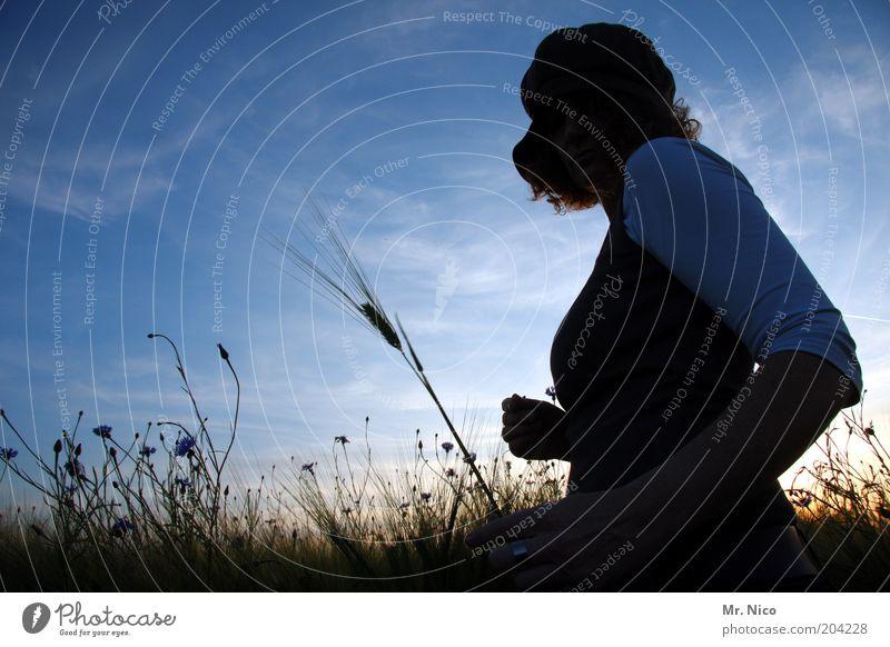 Sommerabend lll feminin Frau Erwachsene Brust Umwelt Natur Landschaft Himmel Klima Schönes Wetter Pflanze Feld Mütze Locken Warmherzigkeit Kornfeld träumen
