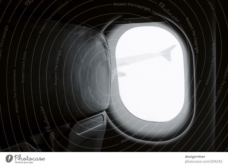 Gute Reise Ferien & Urlaub & Reisen Tourismus Ferne Freiheit Luftverkehr Flugzeug Passagierflugzeug im Flugzeug Flugzeugausblick fliegen Vorfreude Optimismus