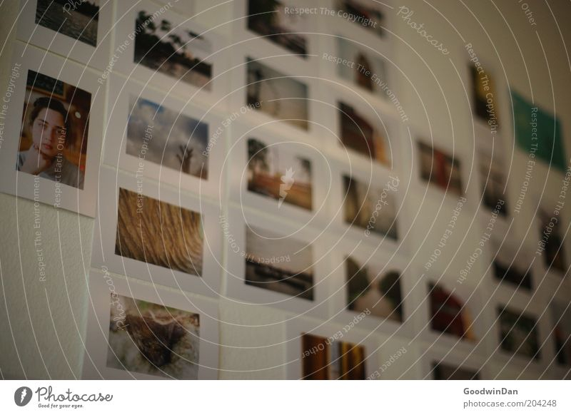 Erinnerungen schön weiß Wand Zufriedenheit Stimmung Fotografie Wohnung Freizeit & Hobby Häusliches Leben außergewöhnlich Erinnerung Eindruck Fototapete