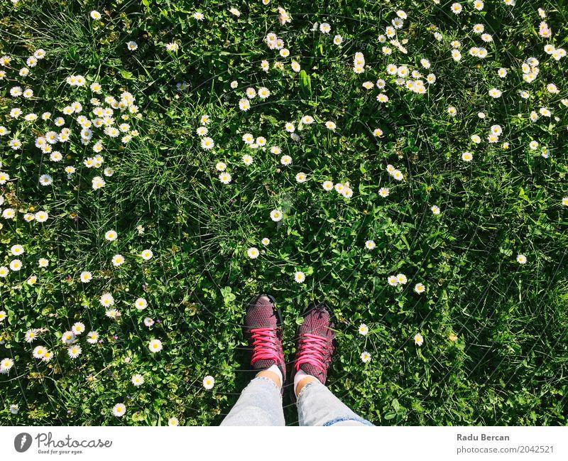 Mensch Frau Natur Ferien & Urlaub & Reisen Jugendliche Pflanze blau Junge Frau Sommer Farbe grün Blume Blatt Freude 18-30 Jahre Erwachsene