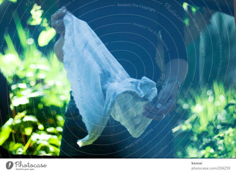 Putztag Mensch Frau Hand grün Erwachsene Leben feminin Garten Autofenster dreckig Arme Finger Häusliches Leben Reinigen Sauberkeit Scheibe