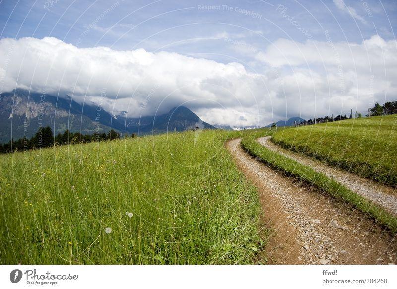verkehrsberuhigte Zone Natur Pflanze Sommer Ferien & Urlaub & Reisen Wolken Erholung Wiese Gras Berge u. Gebirge Wege & Pfade Landschaft Wetter Umwelt frei