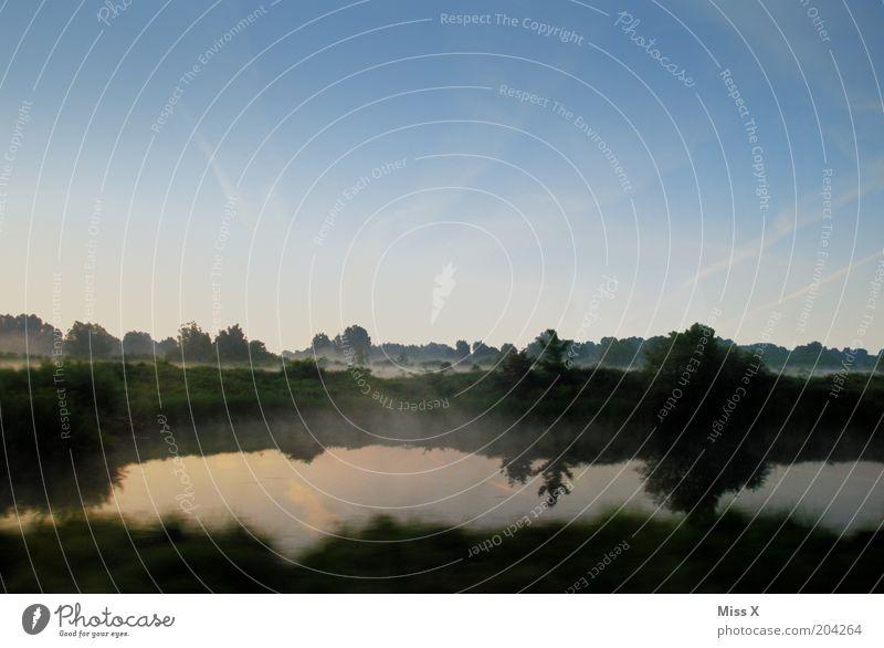 Original englischer Qualitätsnebel Ferien & Urlaub & Reisen Ausflug Natur Wasser Himmel Schönes Wetter Nebel Wiese Wald Moor Sumpf Teich Bach kalt Farbfoto