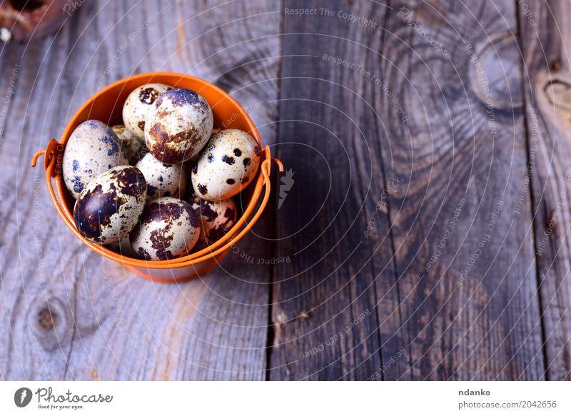 Frische Wachteleier in einem orange Eimer Natur Essen natürlich Holz klein grau Menschengruppe oben hell frisch Tisch Ostern Bauernhof Frühstück Tradition Diät