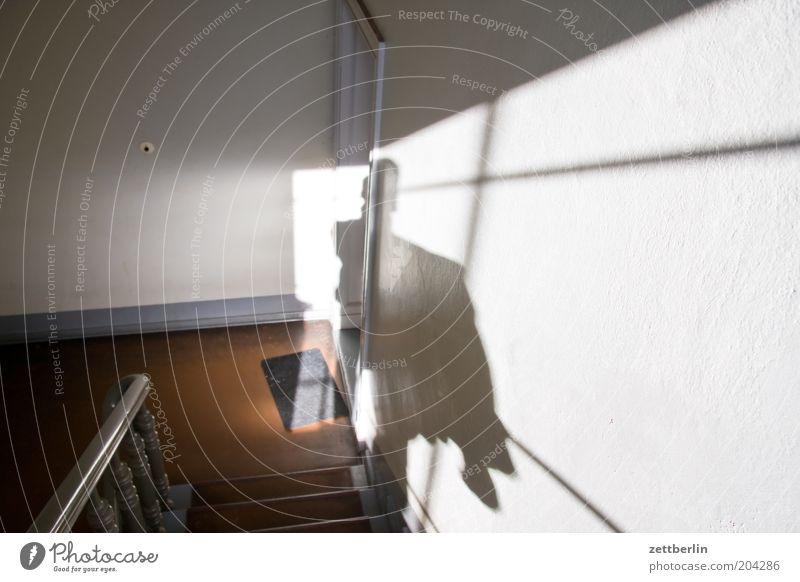 Runterkucken für steffne Haus Treppenhaus Niveau Flur steigen Abstieg Lebenslauf Schatten Mensch Licht Streiflicht Treppenabsatz Mieter Vermieter Geländer