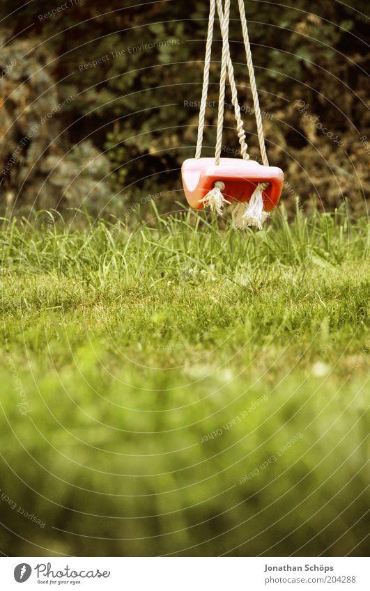 Rumhänger Natur grün rot Sommer ruhig Wiese Gras Garten Landschaft Umwelt Seil leer ästhetisch Spielzeug Idylle Stillleben