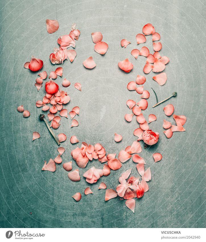 Schöner Blumenrahmen mit rosa Blütenblättern Stil Design Sommer Feste & Feiern Valentinstag Muttertag Hochzeit Geburtstag Natur Pflanze Rose Blatt