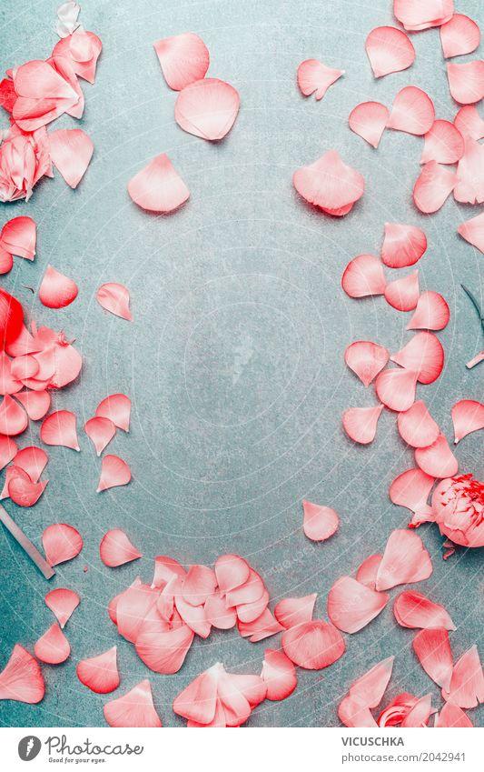Hübsche rosa Blütenblatter Rahmen Stil Design Dekoration & Verzierung Feste & Feiern Valentinstag Muttertag Hochzeit Geburtstag Natur Pflanze Blume Rose Liebe