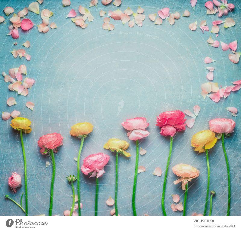 Floral Rahmen mit Blumen und Blütenblätter Lifestyle Stil Design Leben Sommer Feste & Feiern Valentinstag Muttertag Hochzeit Geburtstag Natur Pflanze Frühling