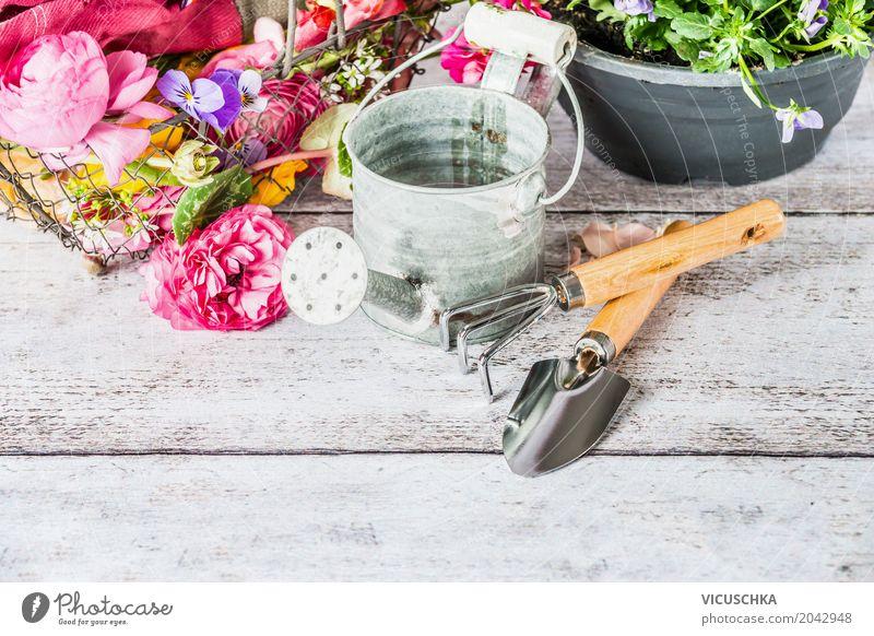 Gartengeräte mit Gießkanne und Blumen Stil Design Freizeit & Hobby Sommer Tisch Natur Pflanze Gerät Gartenarbeit Handschuhe Farbfoto Studioaufnahme Nahaufnahme