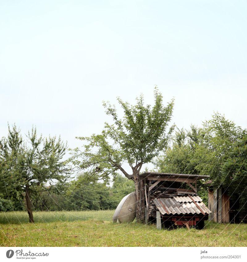 grundstück Natur Himmel Pflanze Baum Gras Wiese Feld Hütte Bauwerk blau grün Holz Anhänger Garten Obstbaum Farbfoto Außenaufnahme Menschenleer Textfreiraum oben