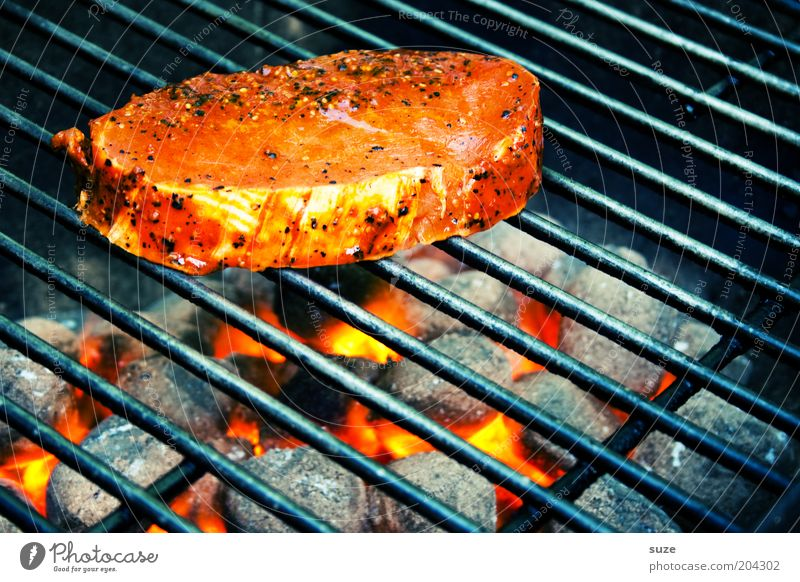 Schweinerücken Ernährung Lebensmittel Freizeit & Hobby heiß Appetit & Hunger Duft Grillen Fleisch Abendessen Speise glühen Glut Grillrost roh
