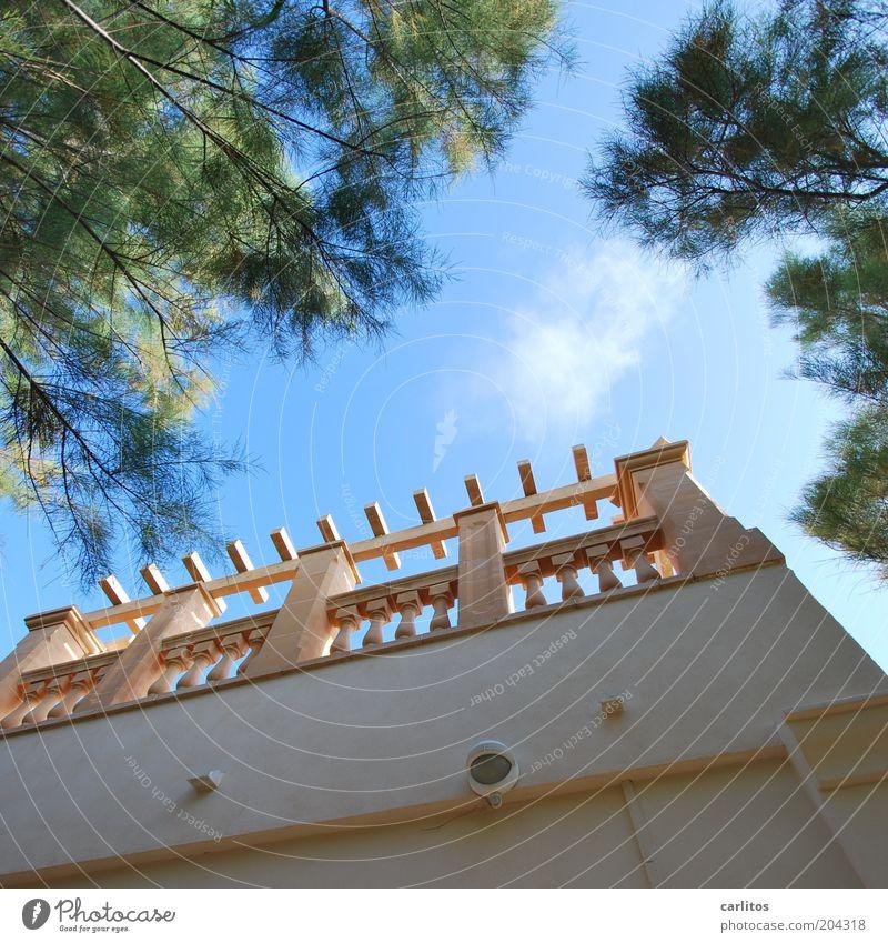Ein Platz an der Sonne Himmel Sommer Schönes Wetter Wärme Baum Tamariske Traumhaus Gebäude Mauer Wand Terrasse Säule Geländer Erholung ästhetisch eckig hoch