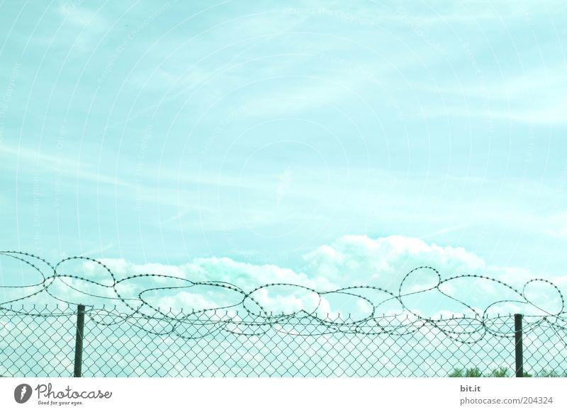 MASCHENHERZDRAHT blau Freiheit Himmel (Jenseits) Angst Umwelt Zeit Horizont bedrohlich Grenze Zaun Kontrolle Krieg gefangen Surrealismus Draht Verbote