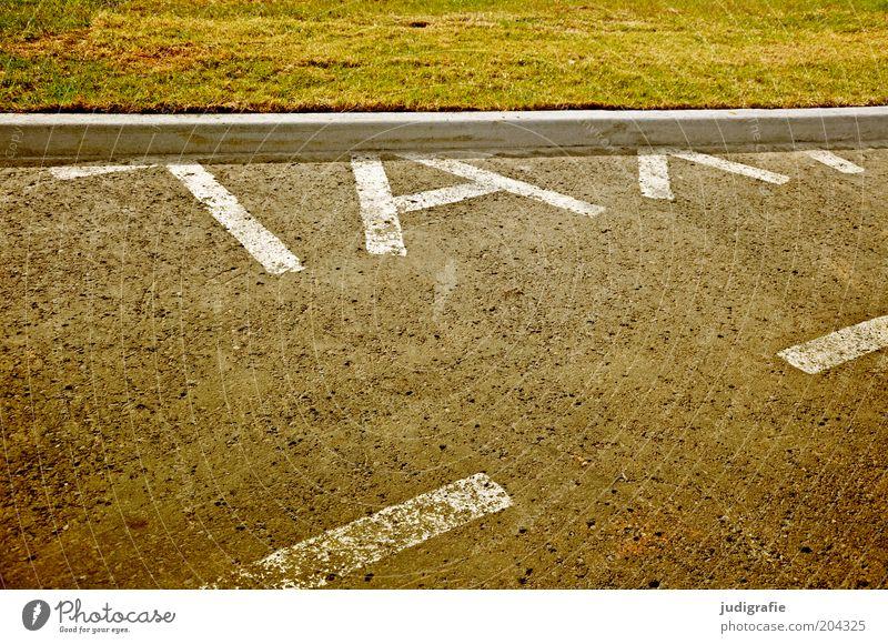 Island Straße Wiese Gras lustig Schilder & Markierungen Platz Schriftzeichen Streifen außergewöhnlich Zeichen Taxi Bordsteinkante Akureyri