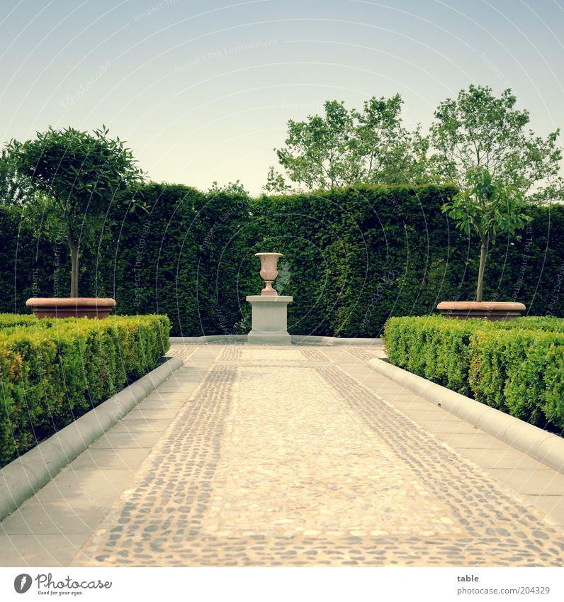 leer . . . Baum grün blau Pflanze Einsamkeit Gefühle Stil Garten grau Stein Park Architektur Design elegant Lifestyle