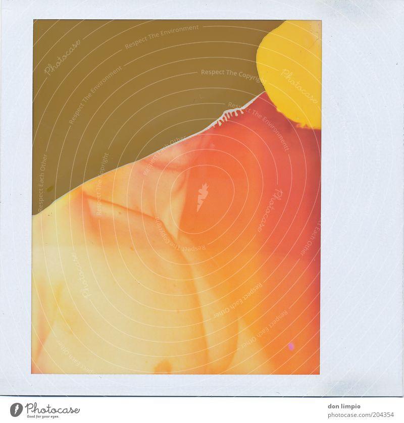 get undressed Freude maskulin Mann Erwachsene Haut Brust Hals 1 Mensch Show Erotik oben retro dünn Lust orange abgelaufen trashig Farbfoto Nahaufnahme Polaroid
