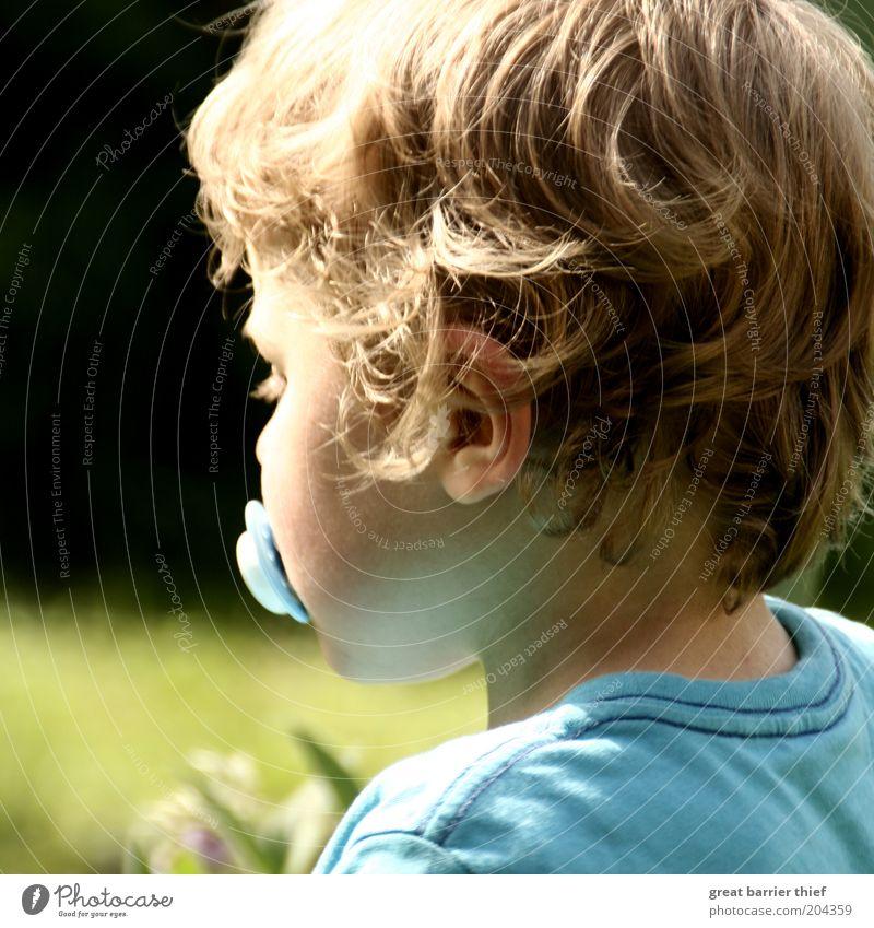 Innere Einkehr Mensch Kind grün blau Sommer Junge Garten Haare & Frisuren Kopf warten maskulin Ohr Kindheit Müdigkeit Kleinkind hell-blau