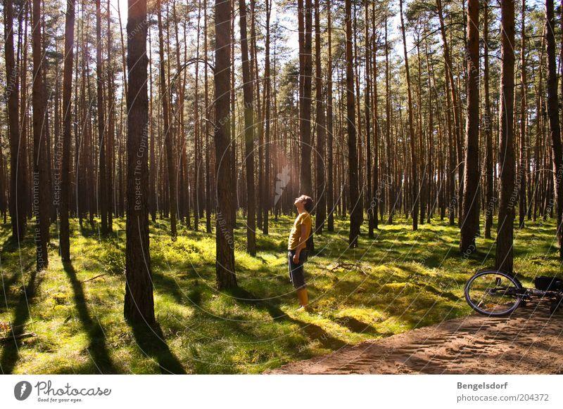 Pause. Freizeit & Hobby Ferien & Urlaub & Reisen Ausflug Freiheit Fahrradtour Sommer Sommerurlaub Junger Mann Jugendliche 1 Mensch Natur Pflanze Baum Gras Wald