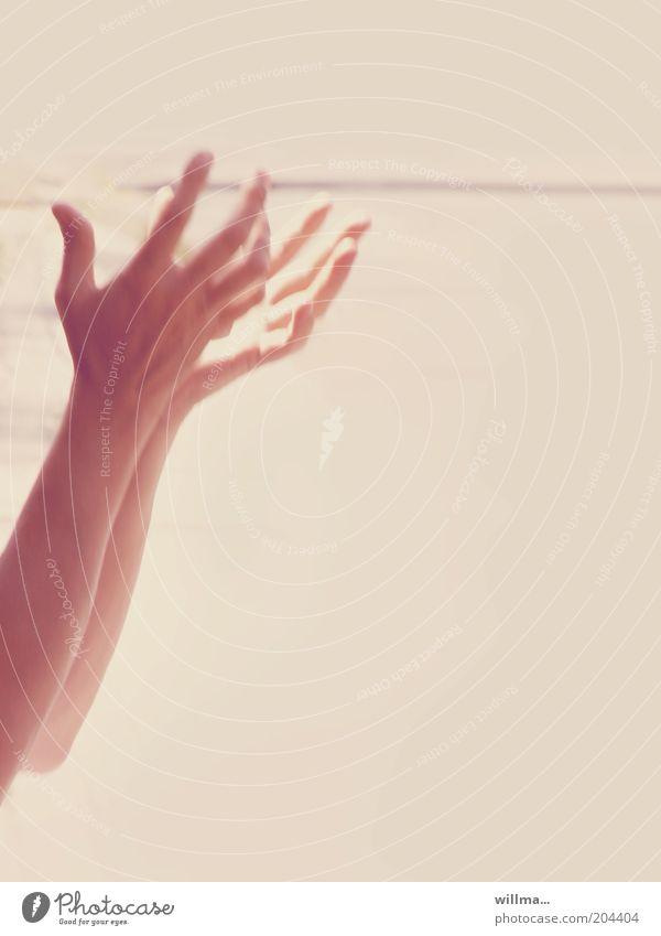 Herr im Himmel, hilf! Hände zum Himmel erhoben Arme Hand dankbar Hoffnung Rätsel Religion & Glaube Rettung Sorge Verzweiflung Wunsch fassungslos Wunder flehen