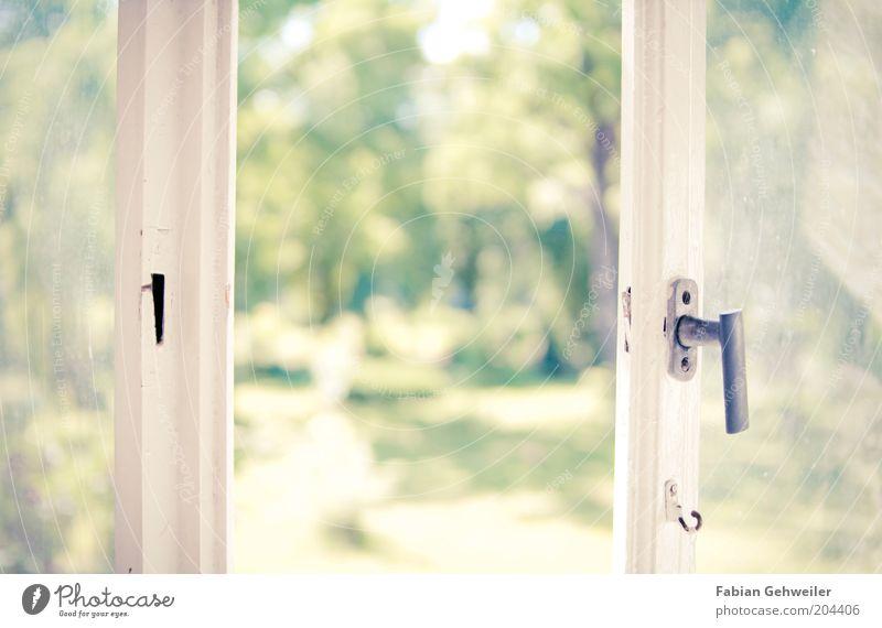 Lass die Sonne rein Natur weiß grün Baum Sommer Erholung Fenster Wärme hell Park Häusliches Leben Wellness Idylle Fensterscheibe Griff Öffnung