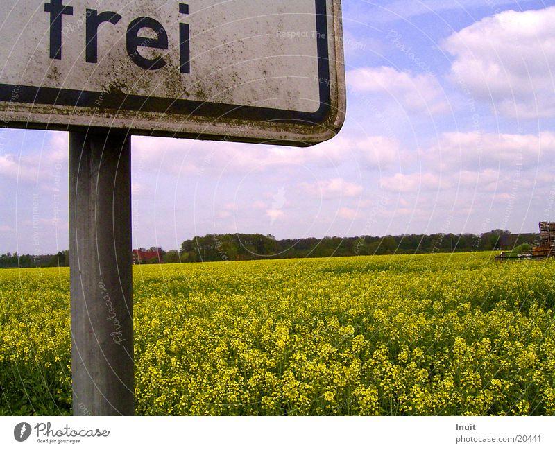 Frei Himmel Wolken Freiheit Feld Schilder & Markierungen Verkehr