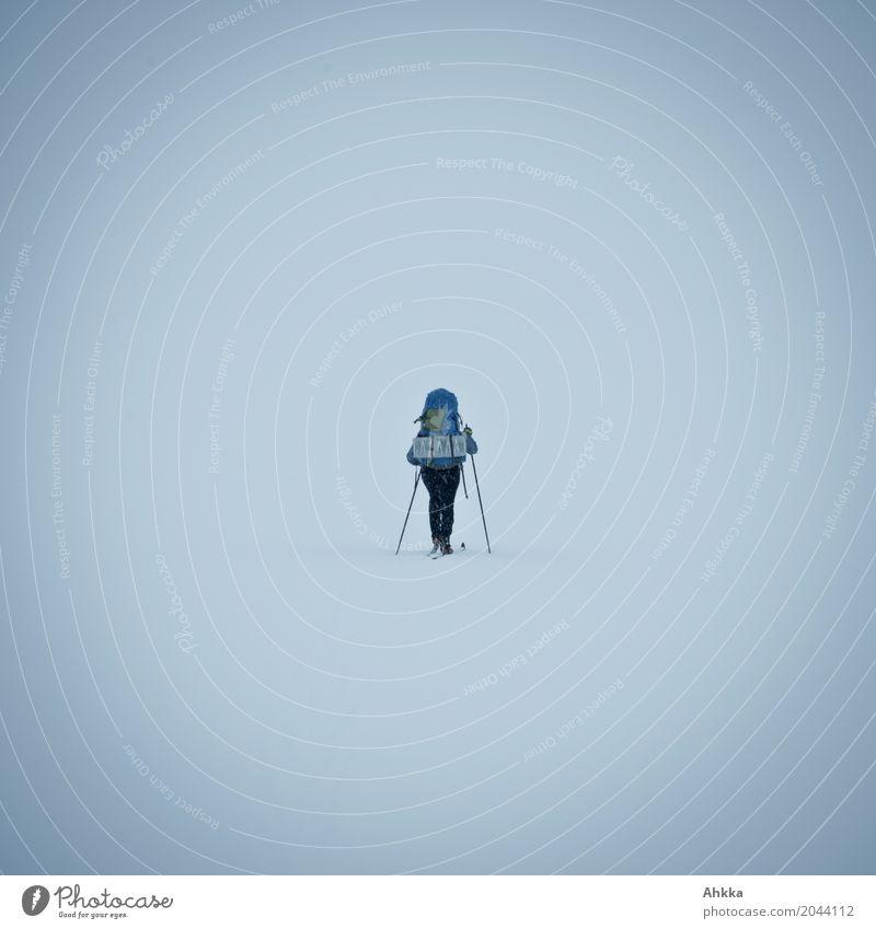 Wegsuchende II Mensch Natur blau Einsamkeit Winter kalt Schnee wild Kraft Perspektive laufen Zukunft Hoffnung Unendlichkeit Skifahren sportlich