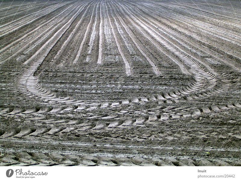 Spuren Feld Verkehr Landwirtschaft Furche Traktor