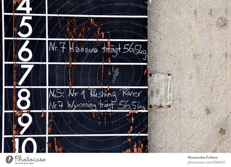 Wyoming trägt 56,5kg schwarz Sport Ziffern & Zahlen Tafel Kreide Konkurrenz Anordnung übersichtlich Reitsport Sportveranstaltung Strukturen & Formen Glücksspiel