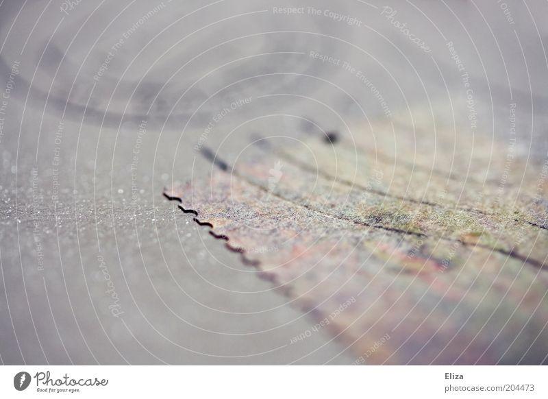 Nahaufnahme eines Briefumschlags mit Briefmarke und Poststempel darauf Kommunikation ästhetisch Stempel violett blassblau Detail Wellenlinie geschwungen