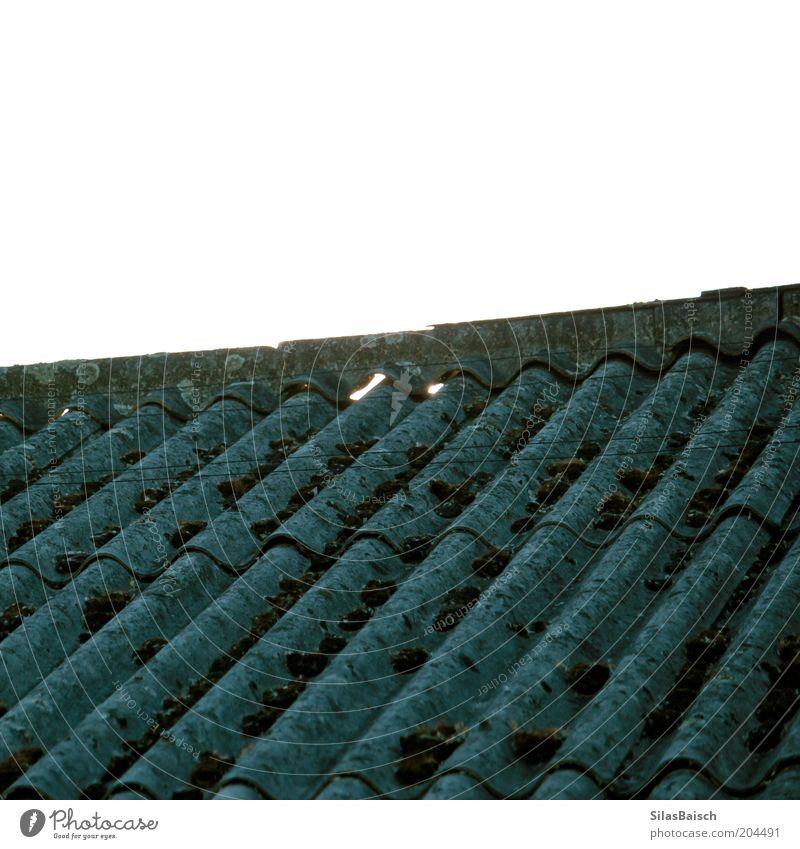 Wellen Dach Natur alt Haus Gebäude dreckig Wachstum trist Dach Bauwerk Moos bewachsen Naturwuchs Wellenform Dachfirst verwildert Dachschräge