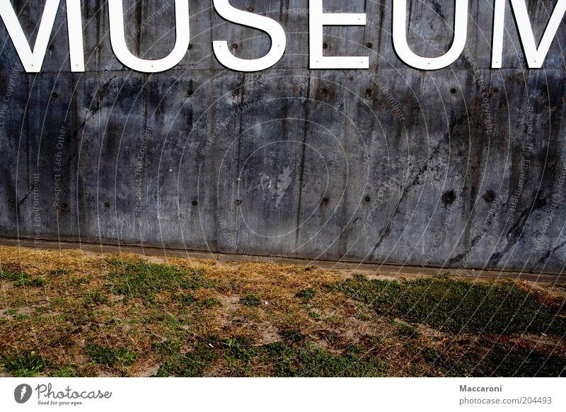 Mumuseum alt Wand Architektur Mauer grau Stein Kunst Park Fassade Schilder & Markierungen Schriftzeichen Ausflug Grafik u. Illustration Kultur Gemälde Typographie