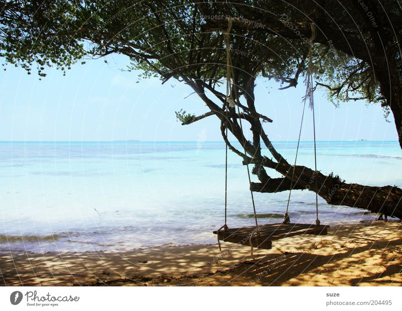 Freitags freier Tag Natur Baum Meer Sommer Strand Ferien & Urlaub & Reisen ruhig Einsamkeit Ferne Erholung träumen Sand Landschaft Küste Zeit Horizont
