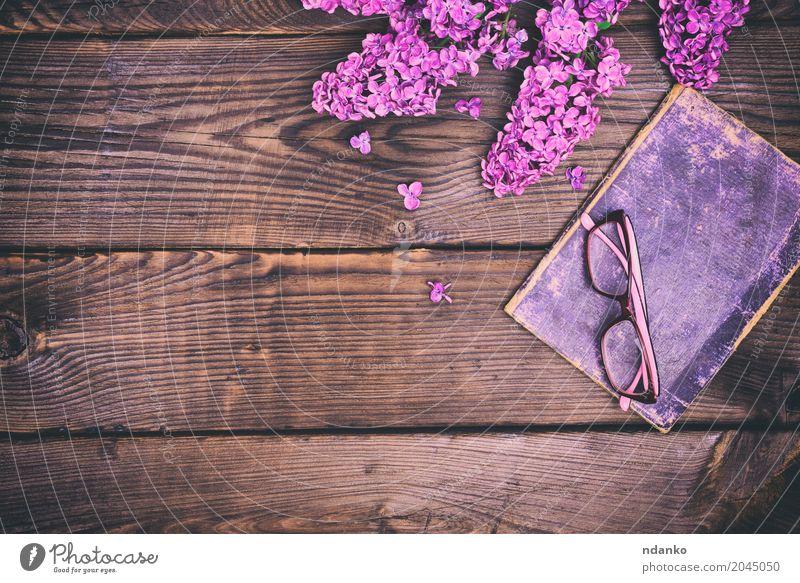 altes Buch in der Abdeckung und in den Gläsern Freizeit & Hobby Bildung Blume Papier Holz Blühend lernen retro braun violett Deckung Brille Rand Fliederbusch