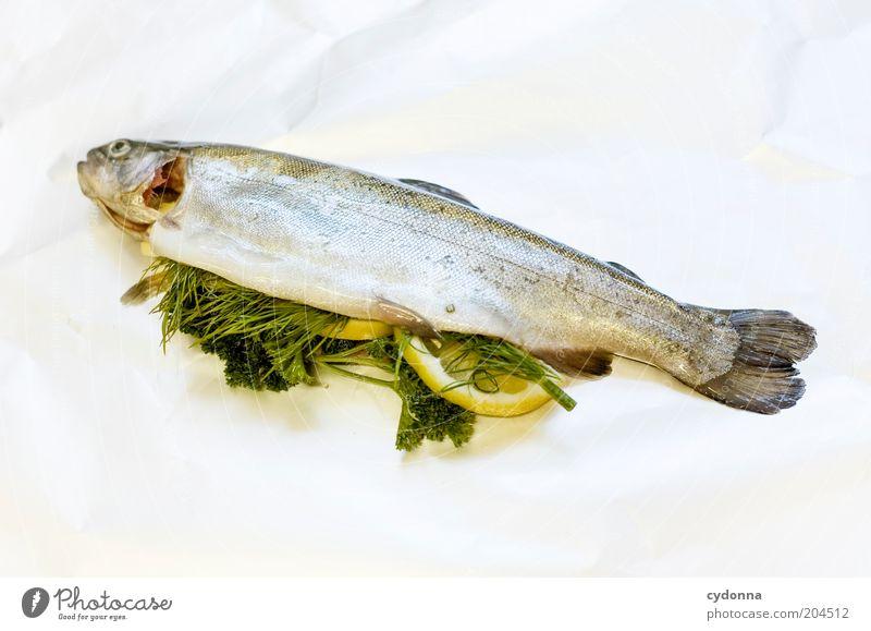 Innere Werte Fisch Kräuter & Gewürze Ernährung Mittagessen Lifestyle Gastronomie Gesundheit Kreativität Qualität Tod Füllung Metallfolie Petersilie voll Inhalt