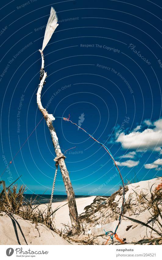 Angebot Himmel weiß Meer blau Freiheit Küste Wind Erfolg Fahne Frieden Zeichen aufwärts Baumstamm Stranddüne wehen Blauer Himmel