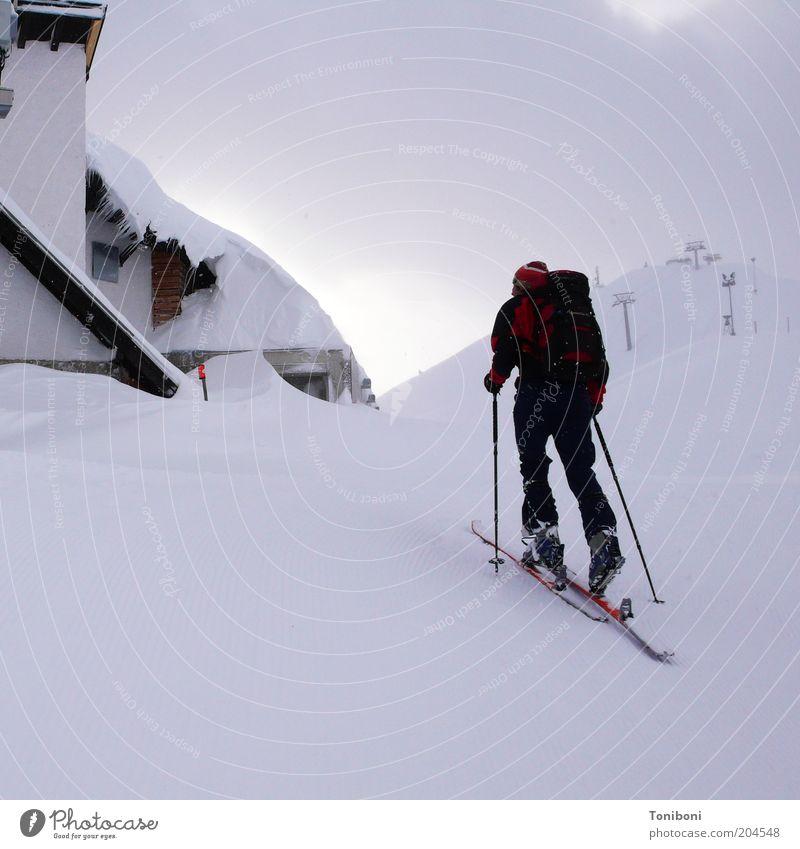 Schneehimmel Natur weiß Wolken Winter ruhig Sport Schnee Berge u. Gebirge Landschaft grau Gesundheit Freizeit & Hobby Kraft Nebel Alpen Skier