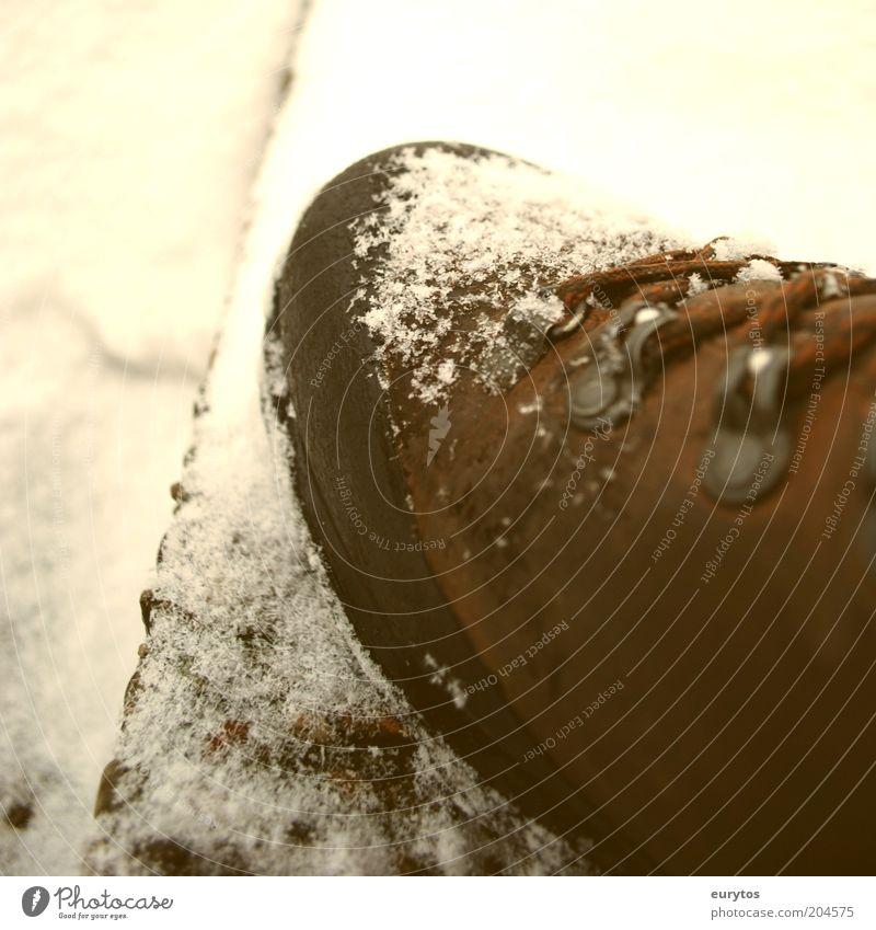 Winter is here! Ferien & Urlaub & Reisen Schnee Bewegung Schuhe wandern Bekleidung Klettern Stiefel Leder Bergsteigen Expedition Makroaufnahme Schneeflocke