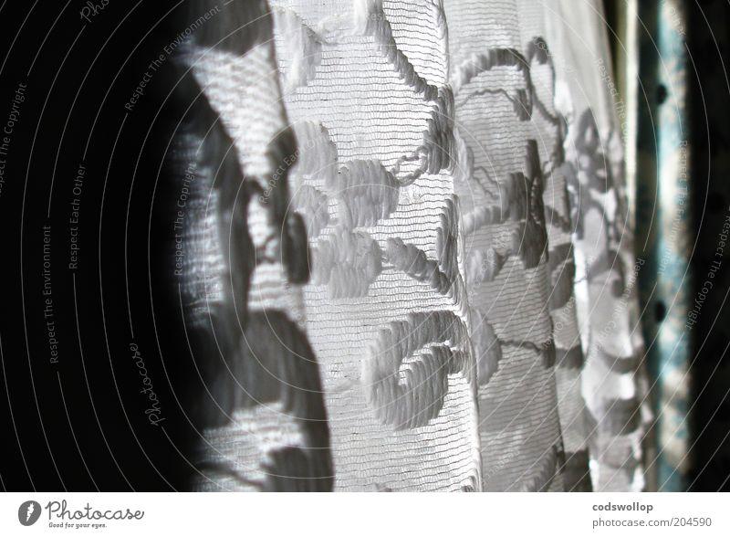 aurore florale Stil Fenster retro Romantik Dekoration & Verzierung Häusliches Leben Vorhang Gardine Haushalt Lichteinfall Textfreiraum links Fensterplatz