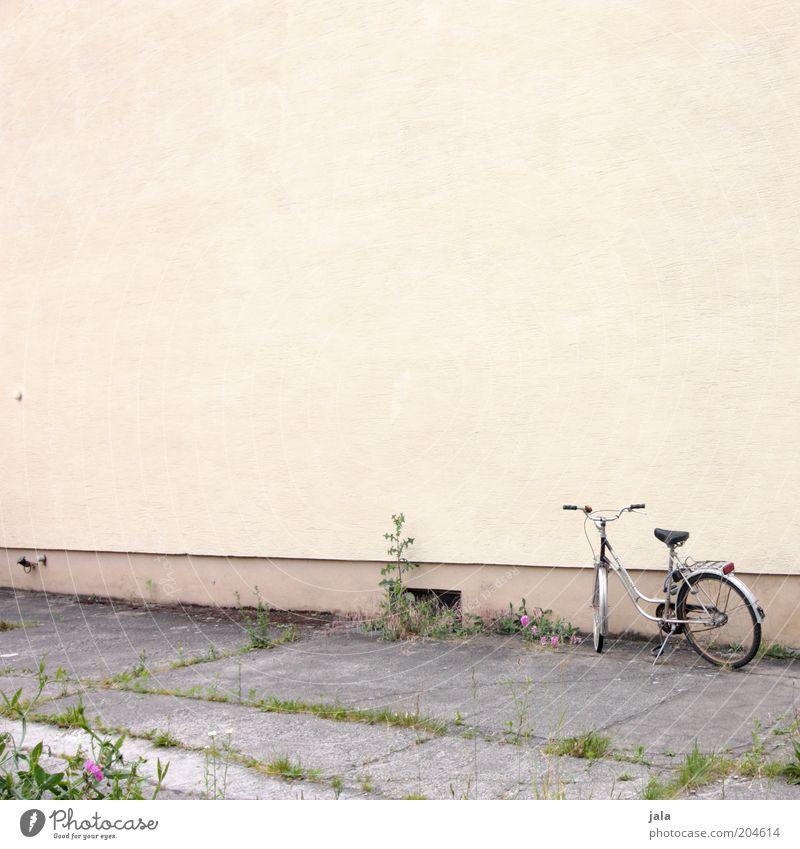 fahrrad Pflanze gelb Wand grau Mauer Gebäude Fahrrad Fassade Bürgersteig Fußweg Unkraut Kinderfahrrad