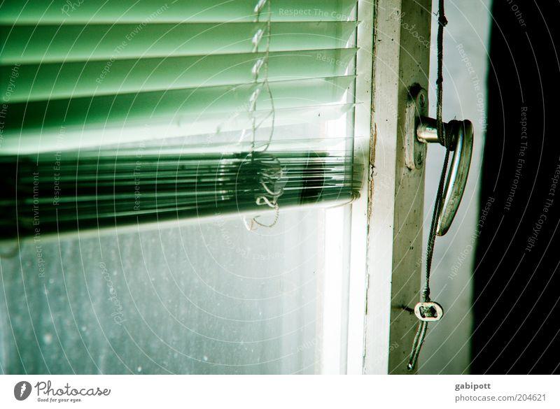Das Fenster zum Hof alt weiß grün schwarz Fenster Gebäude Glas offen kaputt Griff Bildausschnitt Jalousie Lamelle Lamellenjalousie lüften Knauf