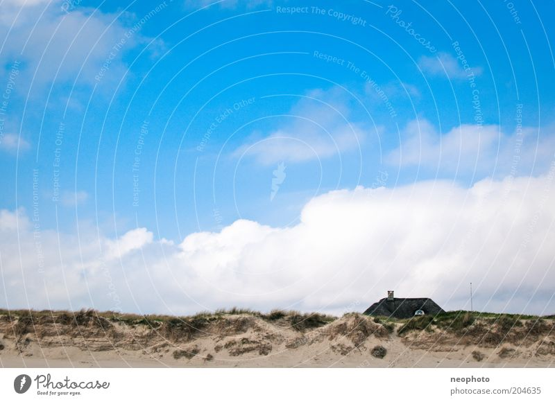 Meerblick Landschaft Himmel Wolken Gras Strandhafer Küste Sand blau grün Freiheit Dänemark Jütland Farbfoto Außenaufnahme Menschenleer Tag Sonnenlicht