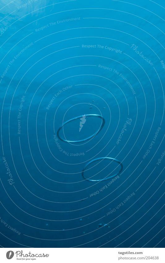 STOP SMOKIN' - START BUBBLIN' Blase Kreis tauchen Wasser Meer blau Farbfoto Textfreiraum oben Textfreiraum unten Wasseroberfläche seltsam außergewöhnlich