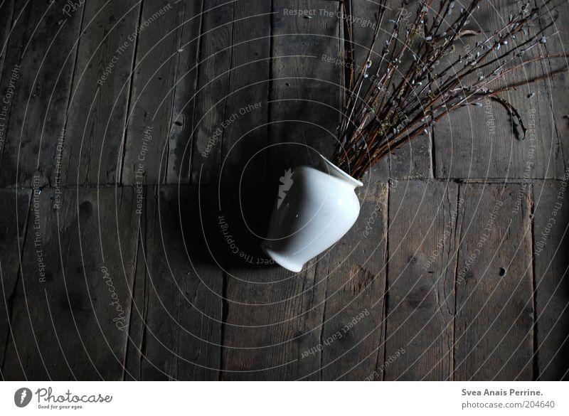 blumen im müll Pflanze Weidenkätzchen Holz liegen dreckig dunkel braun schwarz weiß Gefühle Traurigkeit stagnierend Vase Zweig Schatten Gedeckte Farben